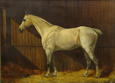 Paintings<br>Archives<br>A  Portrait of a Horse