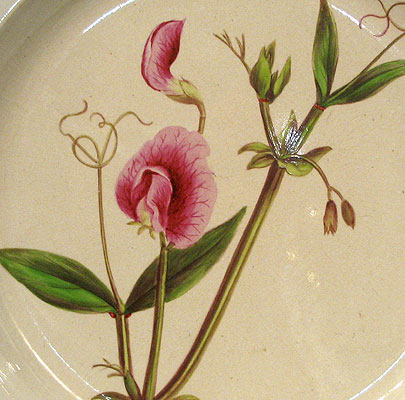 Ceramics<br>Ceramics Archives<br>SOLD  An English Creamware Botanical Plate